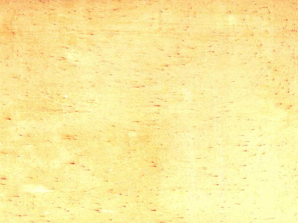 Interior Color Plaster